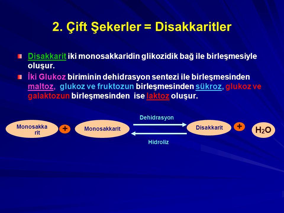 2. Çift Şekerler = Disakkaritler Disakkarit iki monosakkaridin glikozidik bağ ile birleşmesiyle oluşur. İki Glukoz biriminin dehidrasyon sentezi ile b