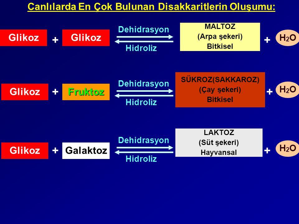 Glikoz Galaktoz Glikoz MALTOZ (Arpa şekeri) Bitkisel Fruktoz SÜKROZ(SAKKAROZ) (Çay şekeri) Bitkisel Glikoz LAKTOZ (Süt şekeri) Hayvansal + Dehidrasyon