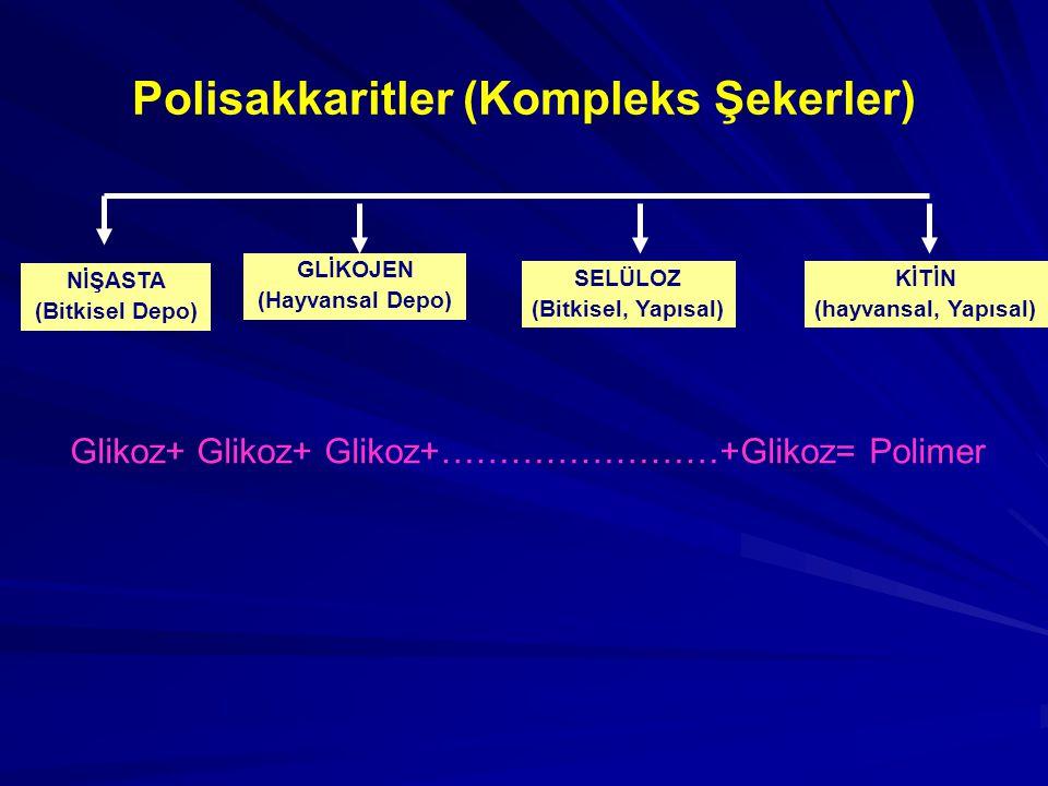 Polisakkaritler (Kompleks Şekerler) NİŞASTA (Bitkisel Depo) GLİKOJEN (Hayvansal Depo) SELÜLOZ (Bitkisel, Yapısal) KİTİN (hayvansal, Yapısal) Glikoz+ G