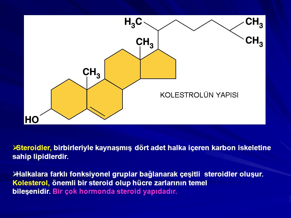  Steroidler, birbirleriyle kaynaşmış dört adet halka içeren karbon iskeletine sahip lipidlerdir.  Halkalara farklı fonksiyonel gruplar bağlanarak çe