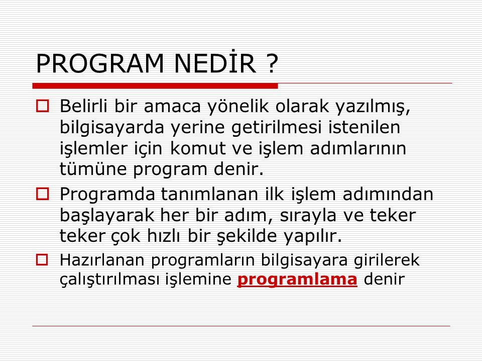 PROGRAM NEDİR .