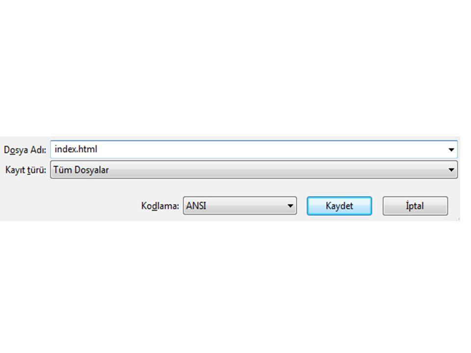 etiketi, html kodlarının yazımına başladığımızı gösteren etikettir.