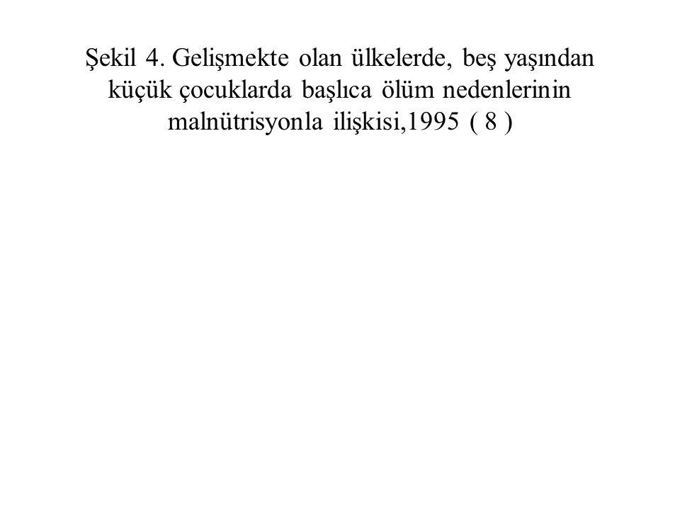 Şekil 4.