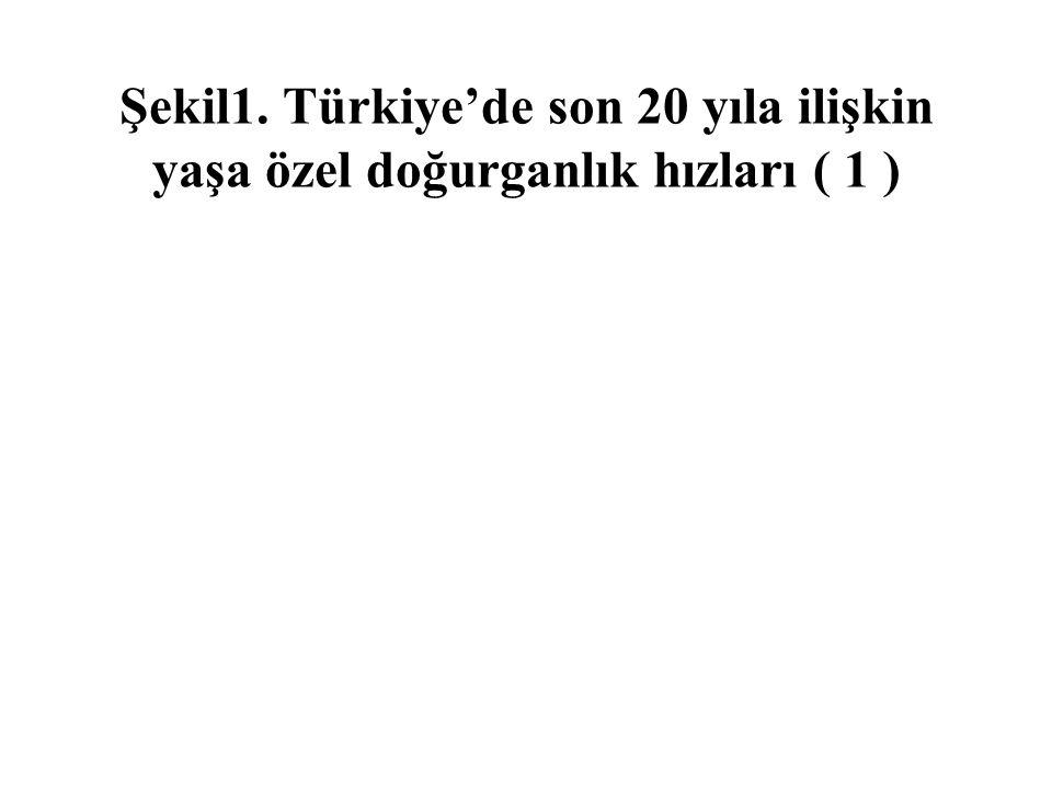 Şekil1. Türkiye'de son 20 yıla ilişkin yaşa özel doğurganlık hızları ( 1 )