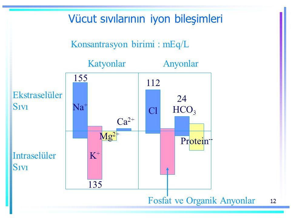 12 Vücut sıvılarının iyon bileşimleri Ekstraselüler Sıvı Intraselüler Sıvı KatyonlarAnyonlar Konsantrasyon birimi : mEq/L Ca 2+ Fosfat ve Organik Anyonlar Protein -- Na + 155 K+K+ 135 Cl 112 HCO 3 24 Mg 2+