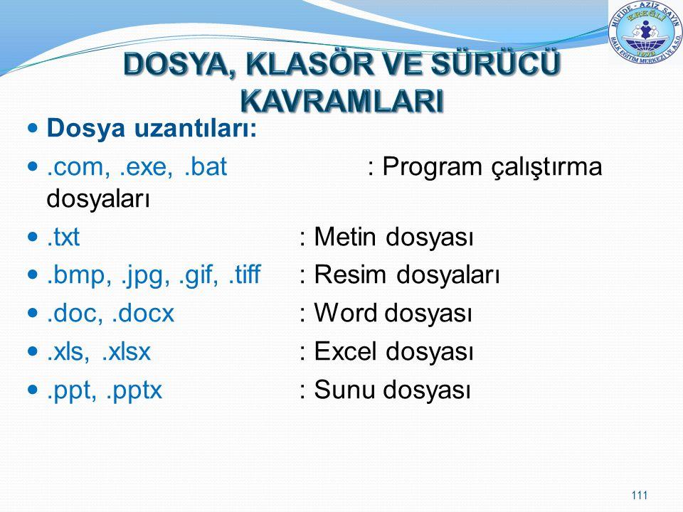 Dosya uzantıları:.com,.exe,.bat : Program çalıştırma dosyaları.txt : Metin dosyası.bmp,.jpg,.gif,.tiff: Resim dosyaları.doc,.docx: Word dosyası.xls,.x