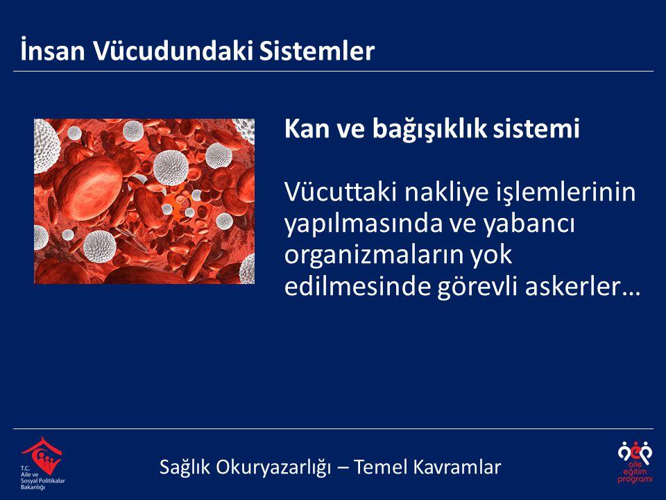 Kan ve bağışıklık sistemi Vücuttaki nakliye işlemlerinin yapılmasında ve yabancı organizmaların yok edilmesinde görevli askerler… İnsan Vücudundaki Si