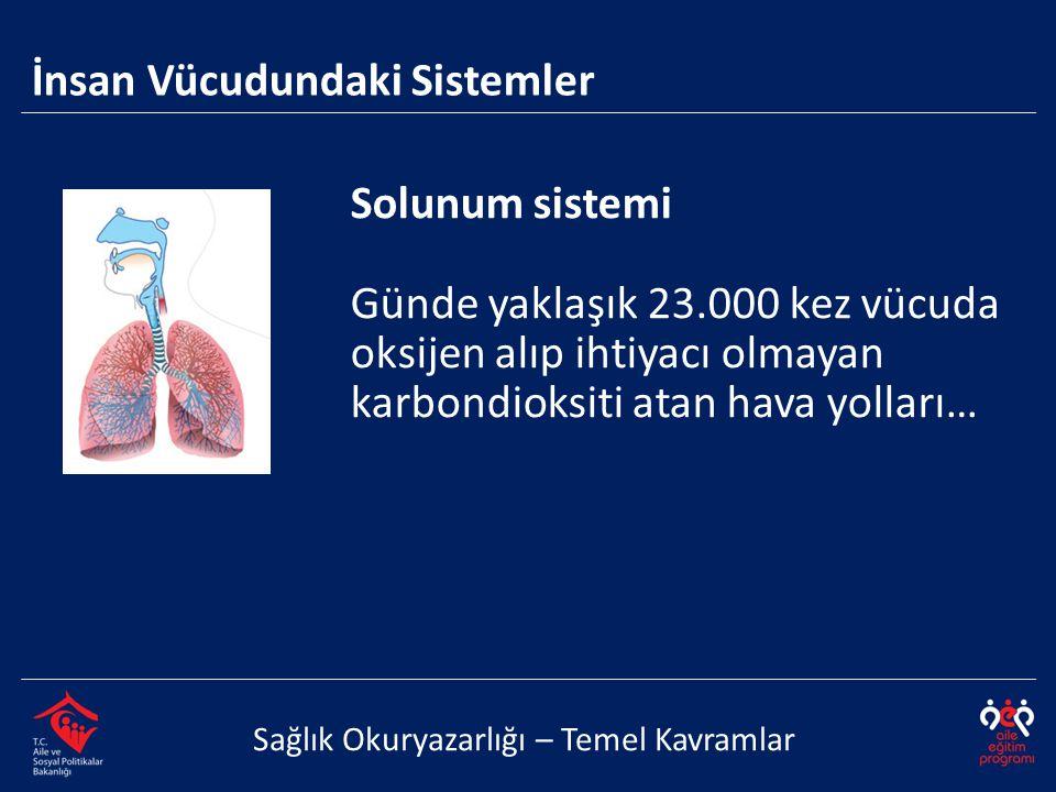 Solunum sistemi Günde yaklaşık 23.000 kez vücuda oksijen alıp ihtiyacı olmayan karbondioksiti atan hava yolları… İnsan Vücudundaki Sistemler Sağlık Ok