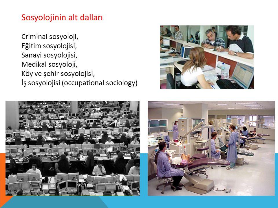 Sosyolojinin alt dalları Criminal sosyoloji, Eğitim sosyolojisi, Sanayi sosyolojisi, Medikal sosyoloji, Köy ve şehir sosyolojisi, İş sosyolojisi (occupational sociology)