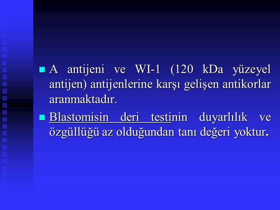 A antijeni ve WI-1 (120 kDa yüzeyel antijen) antijenlerine karşı gelişen antikorlar aranmaktadır. A antijeni ve WI-1 (120 kDa yüzeyel antijen) antijen