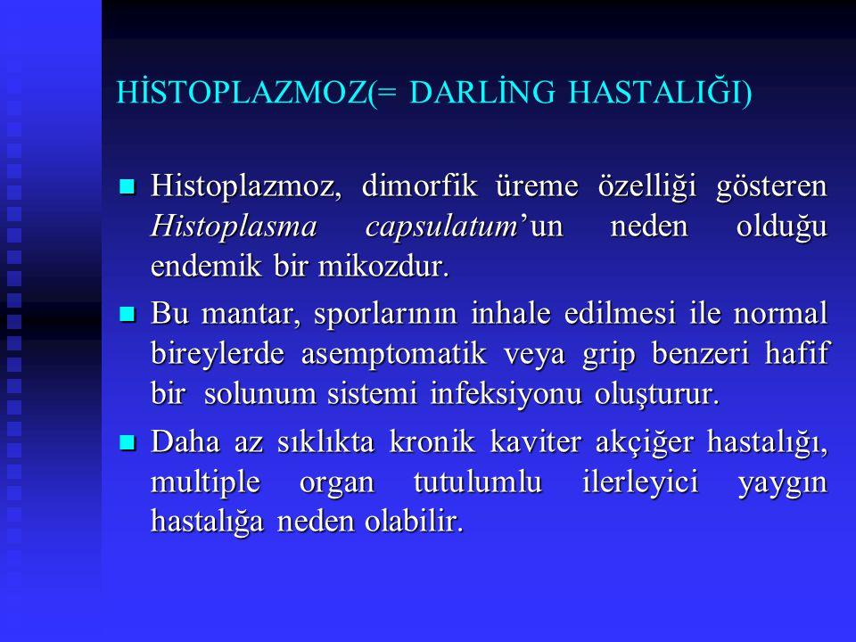 HİSTOPLAZMOZ(= DARLİNG HASTALIĞI) Histoplazmoz, dimorfik üreme özelliği gösteren Histoplasma capsulatum'un neden olduğu endemik bir mikozdur. Histopla