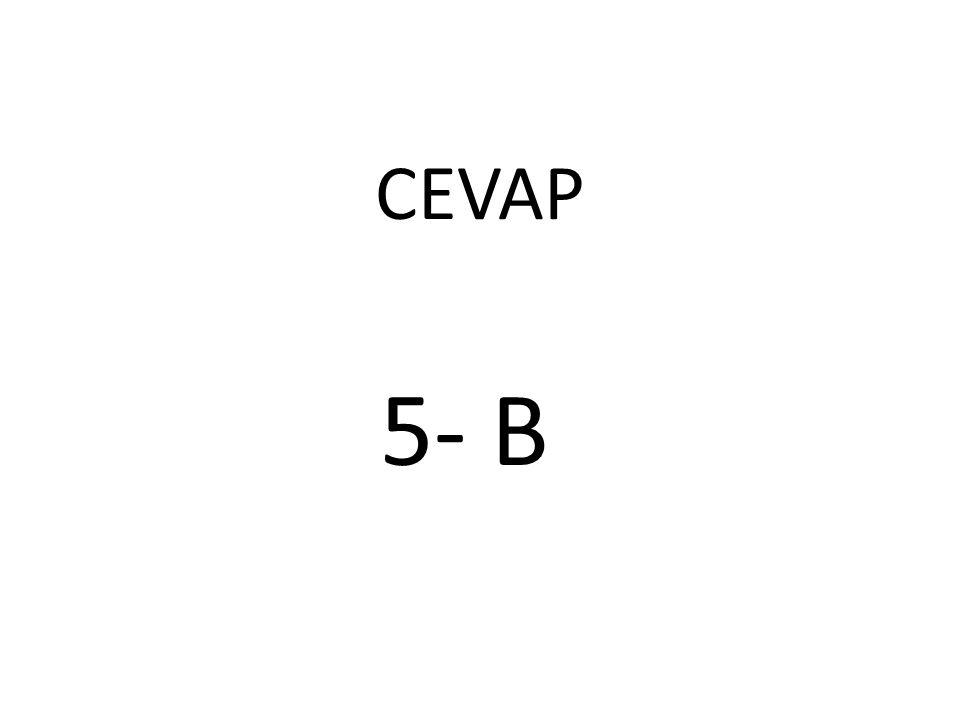CEVAP 5- B