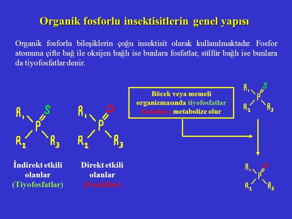 Malation un böcek ve memelilerdeki biyotransformasyonu Malation (inaktif, P=S) Malaokson (aktif, P=O) Hidroliz ürünleri KFO enzim sistemi Böcekte: HIZLI Memelide: HIZLI Böcekte: YAVAŞ Memelide: HIZLI Karboksiesteraz Böcekte: YAVAŞ Memelide: HIZLI İnaktif konjügasyon ürünlerinin idrarla atılımı