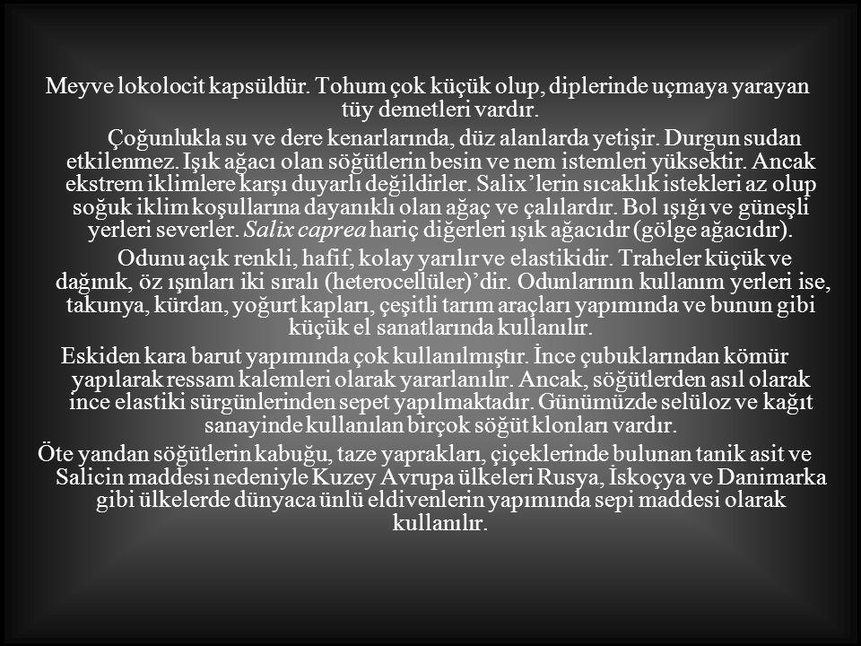 TürkiyeTürkiye de doğal olarak Kuzey Anadolu da görülür, deniz seviyesinden 2300 m yüksekliğe kadar çıkar.