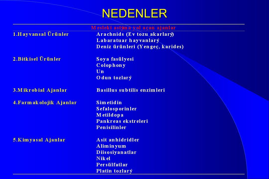 NEDENLER