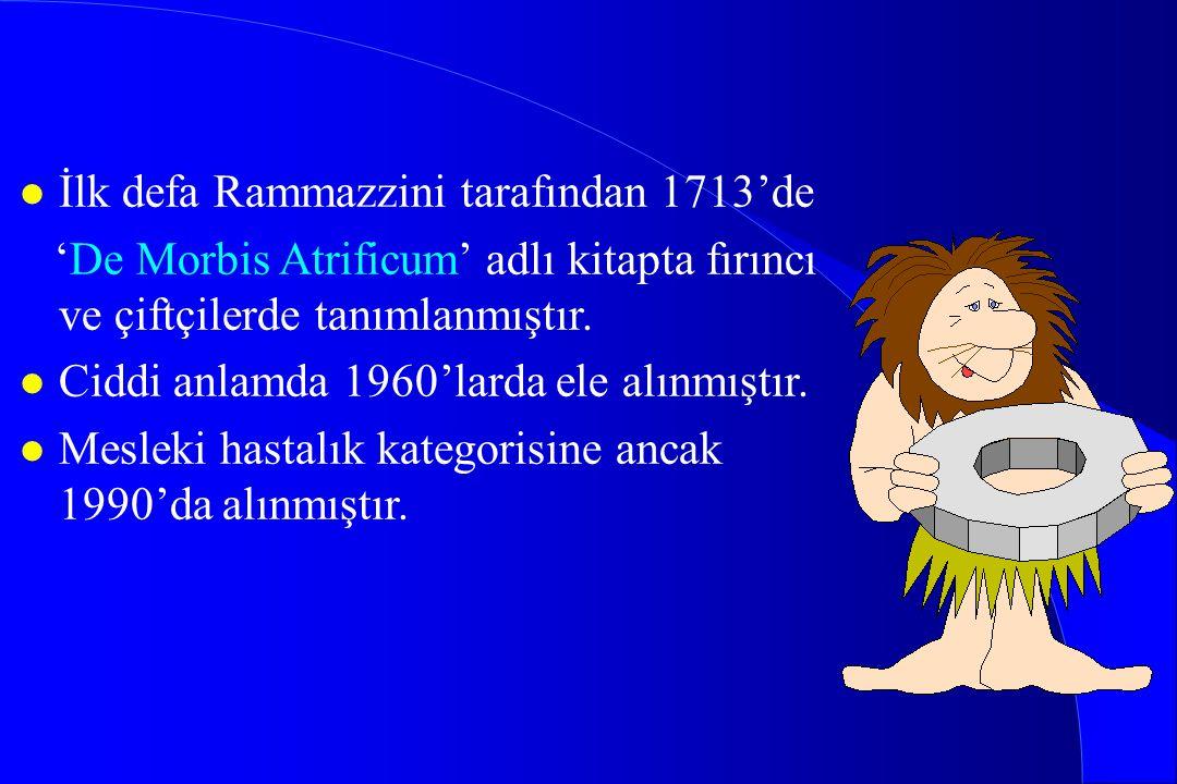 l İlk defa Rammazzini tarafından 1713'de 'De Morbis Atrificum' adlı kitapta fırıncı ve çiftçilerde tanımlanmıştır. l Ciddi anlamda 1960'larda ele alın