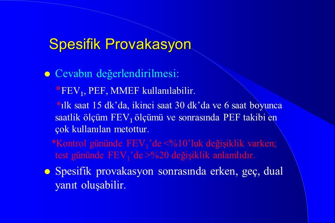 Spesifik Provakasyon l Cevabın değerlendirilmesi: * FEV 1, PEF, MMEF kullanılabilir. *ılk saat 15 dk'da, ikinci saat 30 dk'da ve 6 saat boyunca saatli