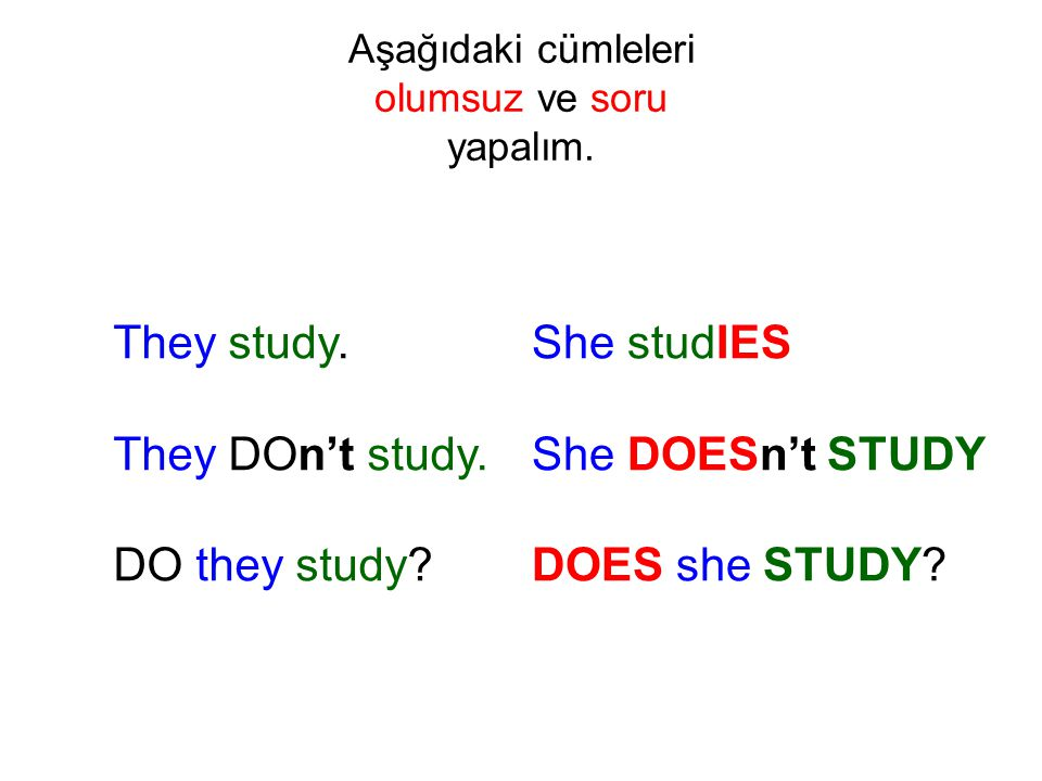 They study. They DOn't study. DO they study? She studIES She DOESn't STUDY DOES she STUDY?