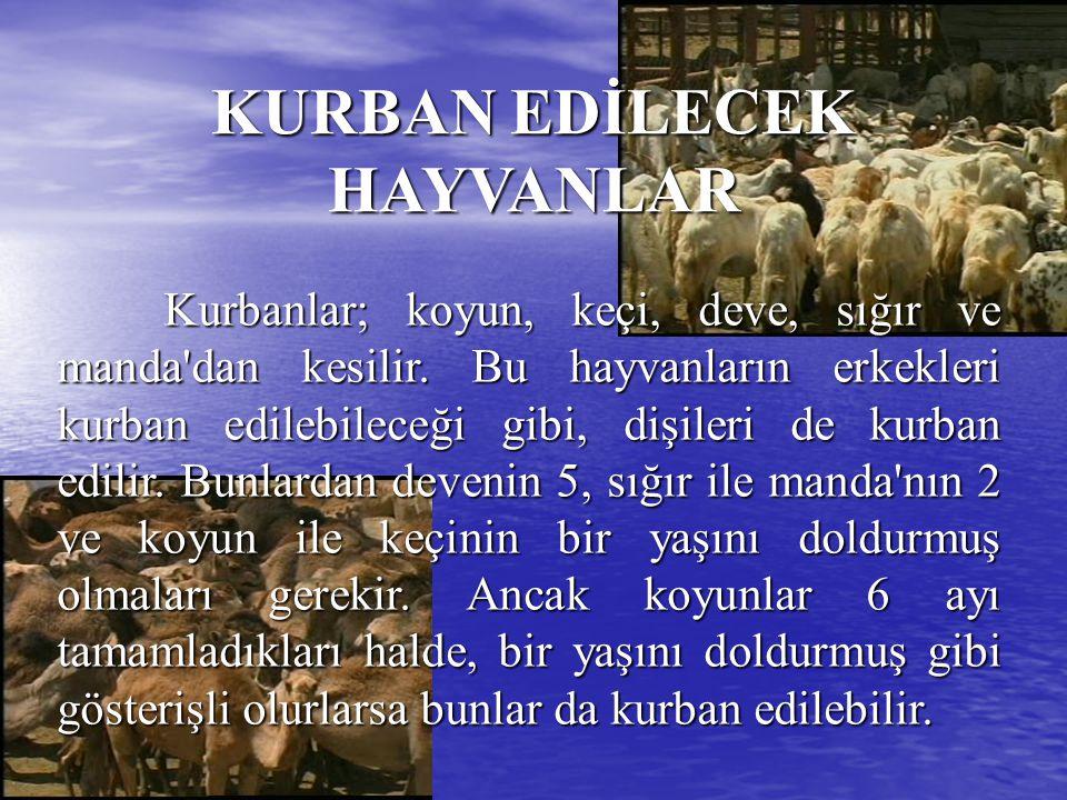 Kurbanlar; koyun, keçi, deve, sığır ve manda'dan kesilir. Bu hayvanların erkekleri kurban edilebileceği gibi, dişileri de kurban edilir. Bunlardan dev