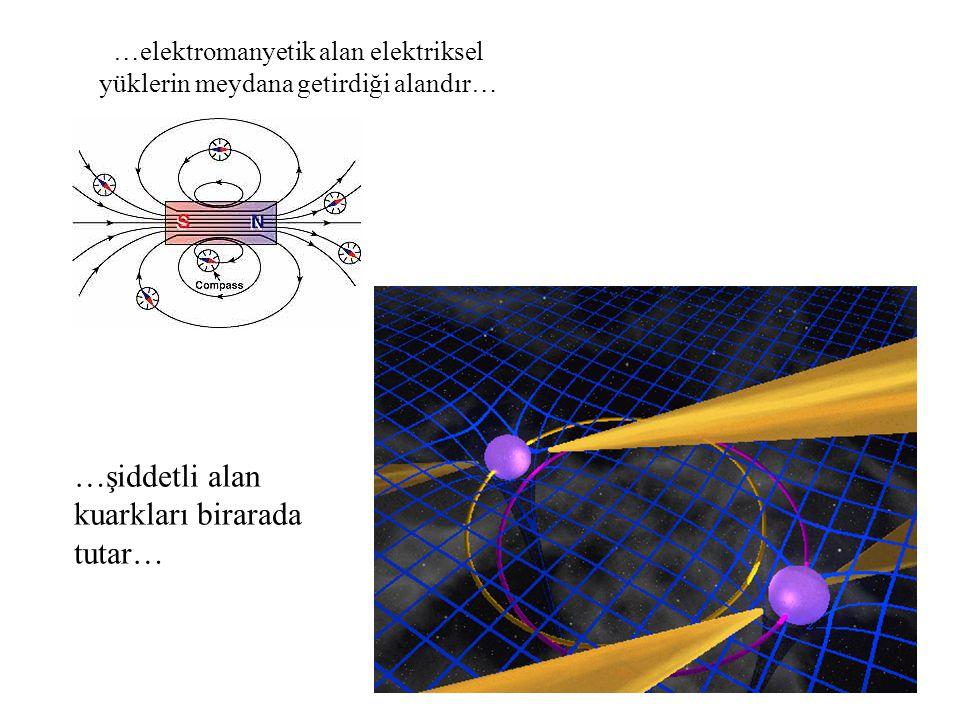 …elektromanyetik alan elektriksel yüklerin meydana getirdiği alandır… …şiddetli alan kuarkları birarada tutar…