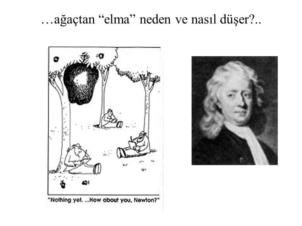 """…ağaçtan """"elma"""" neden ve nasıl düşer?.."""