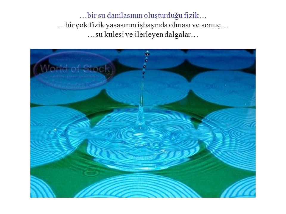 Mikro Evrende Dalga Fonksiyonu (Ψ) Erwin Schrödinger 'e göre mikro dünyada yani atomların ve daha küçük parçacıkların bulunduğu evrende tüm parçacıkların uymak zorunda olduğu bir Dalga Denklemi vardır… Schrödinger Dalga Denklemi …Bu durum havaya atılan bir taşın F = m.a denklemine uymak zorunluluğu gibidir… Bu denklem tüm parçacıkların bir dalga karakterinin olacağını ve bu özelliklerinin de Ψ gibi bir matematiksel fonksiyon ile ifade edileceğini söyler…Yani bizim tanecik gibi düşündüğümüz örneğin atomlar aslında tanecik değildir uzayda yayılmış bir dalga yumağıdır… Ψ 2 ise o taneciğin her hangi bir anda herhangi bir noktada % kaç olasılıkla bulunabileceğini yani olasılık yoğunluğunu ifade eder...yani biz kesinlikle şuradadır buradadır diyemiyoruz… Böylece klasik fizikteki kesinlik yani Deterministik (Kesinlik) Yaklaşım mikro dünyada geçerli değil onun yerine Olasılıklar Yaklaşımı geçerlidir… Einstein buna bir türlü ikna olamamış ve ünlü Tanrı asla zar atmaz. sözünü söylemiştir…ancak yanılmıştır…gerçek odur ki mikro dünyada sadece olasılıklar vardır…
