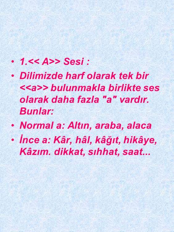 TÜRKÇENİN BAZI SESLERİYLE İLGİLİ ÖZELLİKLER Türkçedeki kimi sesler, telâffuz açısından son derece önem taşımaktadır. Aşağıda söyleyiş açısından en çok