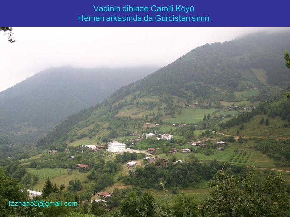 Vadinin dibinde Camili Köyü. Hemen arkasında da Gürcistan sınırı. fozhan53@gmail.com