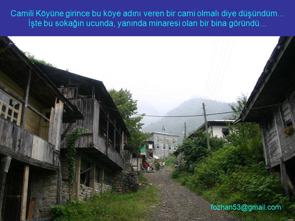 Serenderler hem vadide hem de köyün her noktasında mevcut... fozhan53@gmail.com
