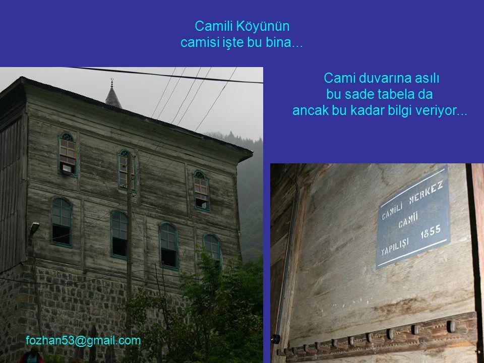 Camili Köyünün camisi işte bu bina...