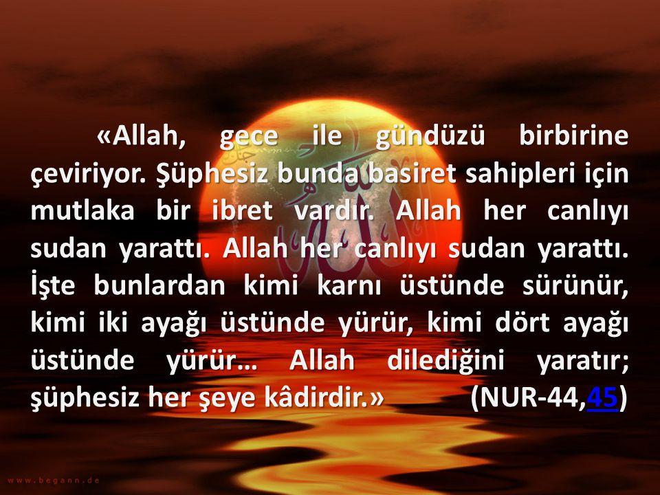 «Allah, gece ile gündüzü birbirine çeviriyor. Şüphesiz bunda basiret sahipleri için mutlaka bir ibret vardır. Allah her canlıyı sudan yarattı. Allah h