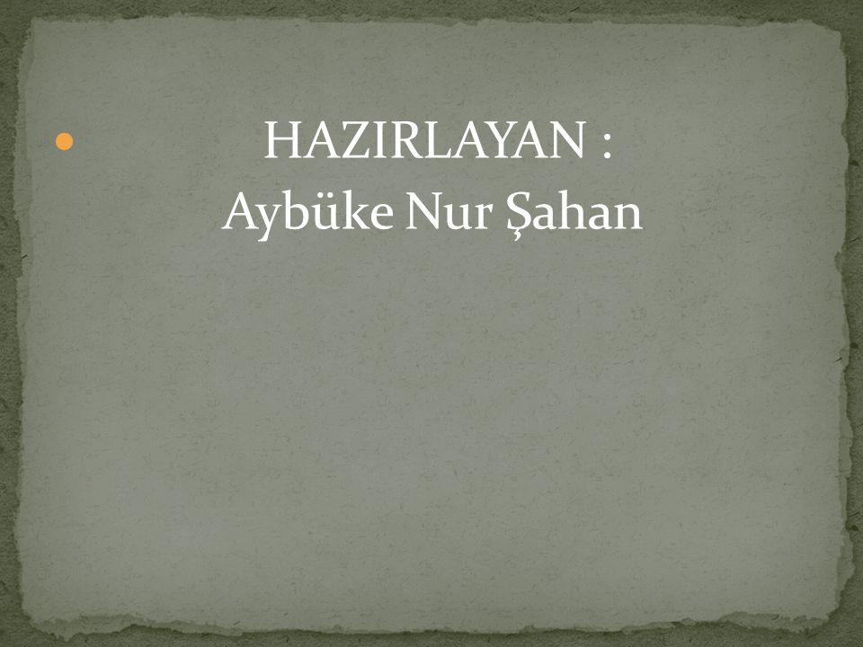HAZIRLAYAN : Aybüke Nur Şahan
