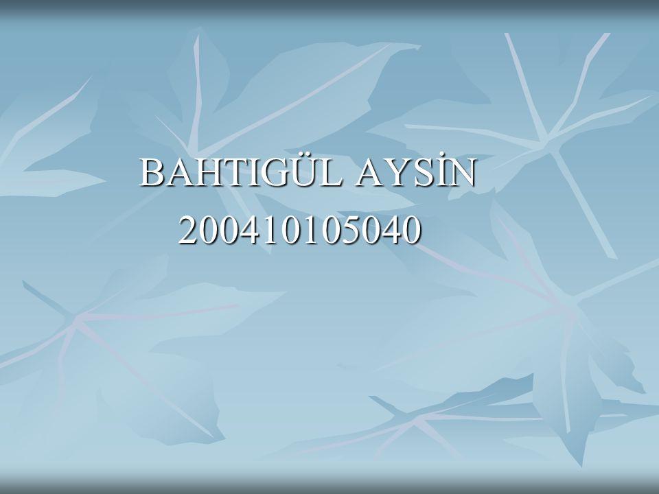 BAHTIGÜL AYSİN BAHTIGÜL AYSİN 200410105040 200410105040