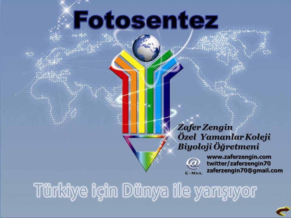 Zafer Zengin Özel Yamanlar Koleji Biyoloji Öğretmeni www.zaferzengin.com twitter/zaferzengin70 zaferzengin70@gmail.com
