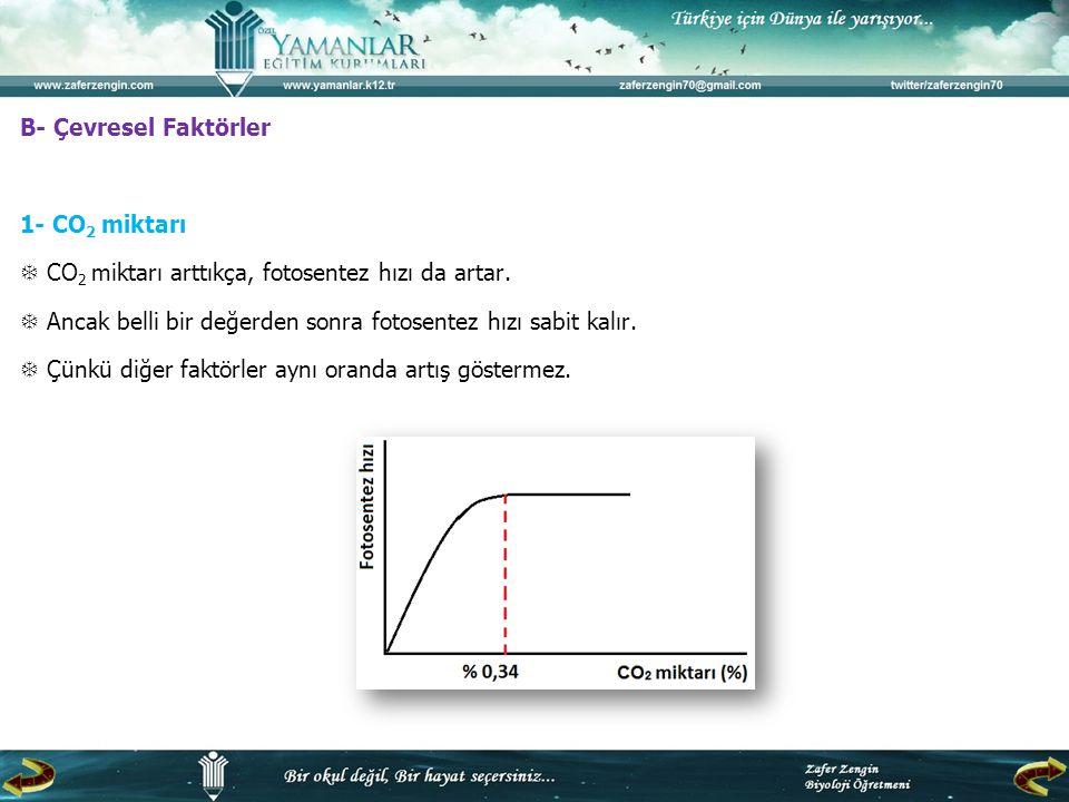 B- Çevresel Faktörler 1- CO 2 miktarı  CO 2 miktarı arttıkça, fotosentez hızı da artar.