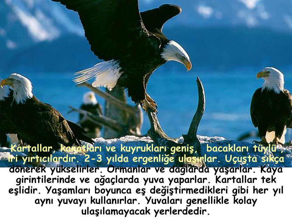 KARTAL PENÇESİ S.S.