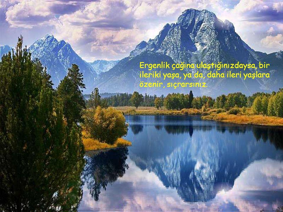 Ergenlik çağına ulaştığınızdaysa, bir ileriki yaşa, ya da, daha ileri yaşlara özenir, sıçrarsınız.