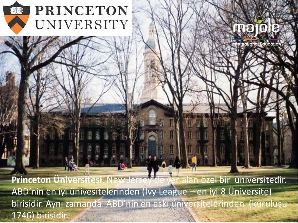 Princeton Üniversitesi, New Jersey'de yer alan özel bir üniversitedir. ABD'nin en iyi ünivesitelerinden (Ivy League – en iyi 8 Üniversite) birisidir.
