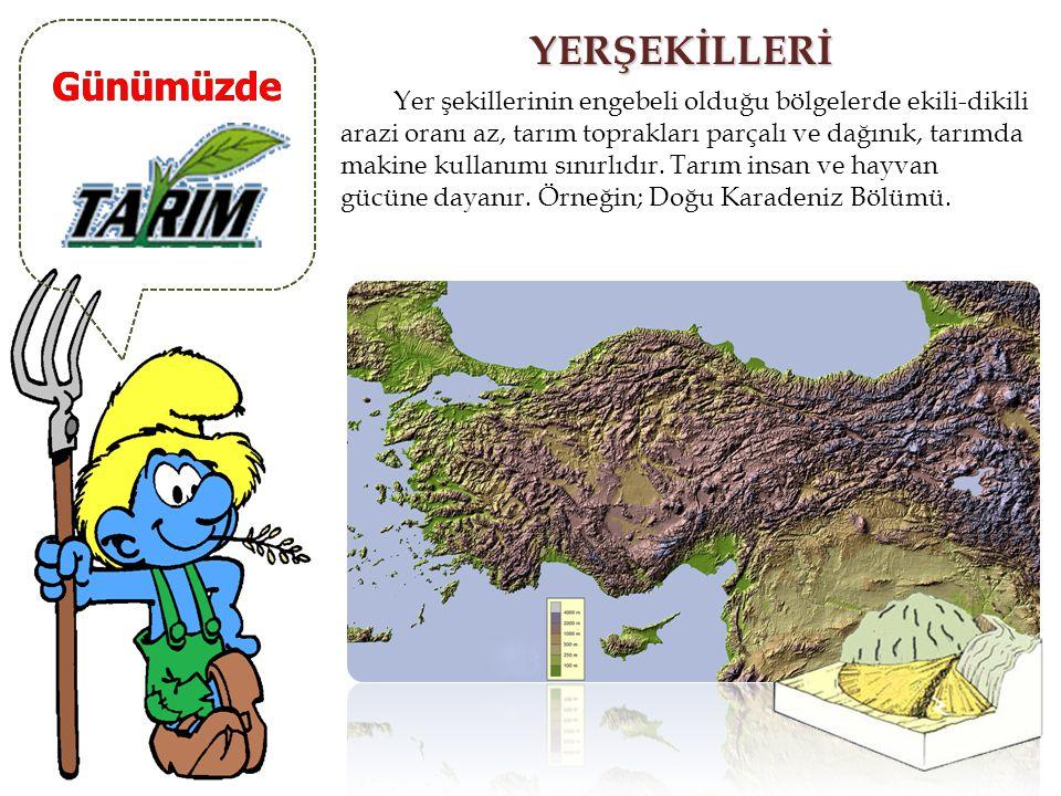 Günümüzde YÜKSELTİ Yükselti sıcaklığı düşürdüğünden tarım faaliyetlerini sınırlar, tarım yapabilme süresini kısaltır. Örneğin; Doğu Anadolu Bölgesi. Y