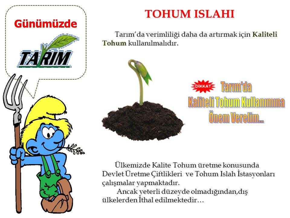 Günümüzde GÜBRELEME Tarımda verimliliği artırmak için Gübre Kullanımı artırılmalıdır. Tarımda verimliliği artırmak için Gübre Kullanımı artırılmalıdır