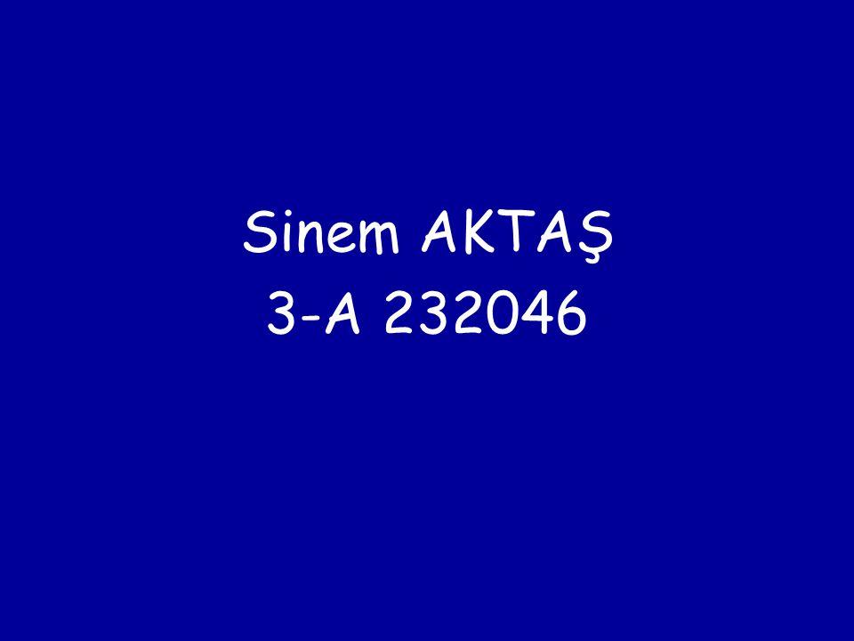Sinem AKTAŞ 3-A 232046