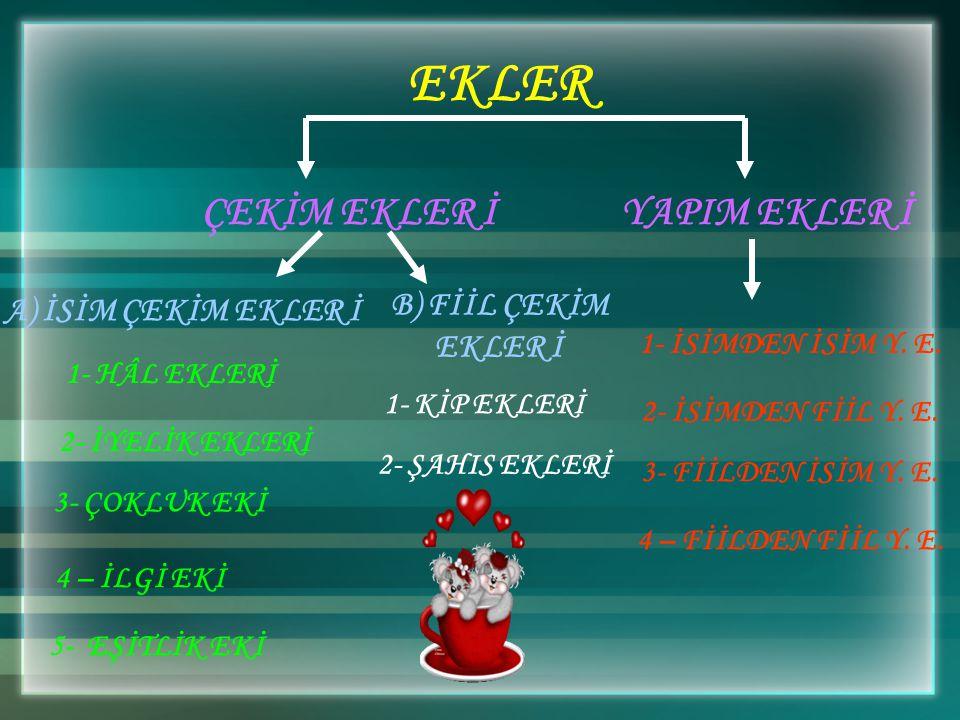 (2007-DPY) Aşağıdaki kelimelerden hangisinin kökü fiildir? A) A) Daralmak B) B) Yönelmek C) C) Açılmak D) D) Körelmek