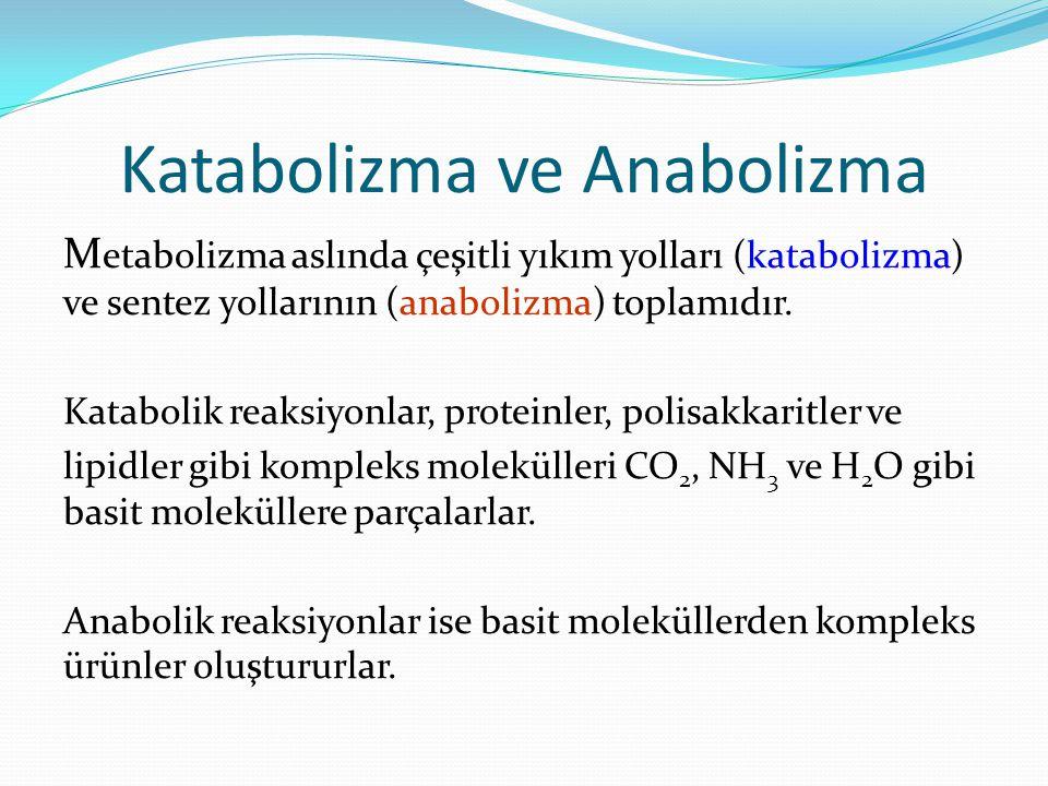 Katabolizma ve Anabolizma M etabolizma aslında çeşitli yıkım yolları (katabolizma) ve sentez yollarının (anabolizma) toplamıdır. Katabolik reaksiyonla