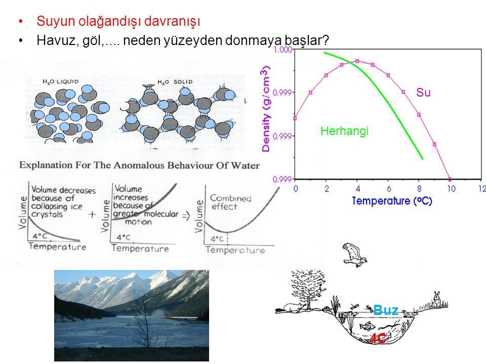 Suyun olağandışı davranışı Havuz, göl,.... neden yüzeyden donmaya başlar? Su Herhangi 4C Buz
