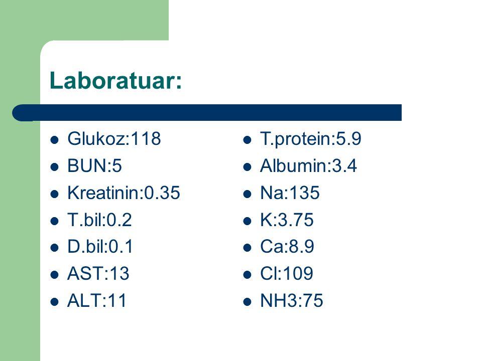 Hemogram Kan Gazı WBC: 12.100 Neu:9.42 RBC:4.18 Hb:10.1 Htc:30.3 MCV:72.4 Plt:293000 pH:7.40 pO2:127.4 pCO2:35.7 SO2:98.7 HCO3:21.8 A.Gap:16.3