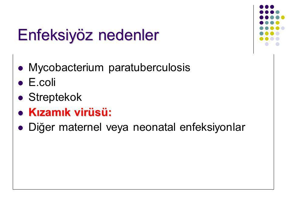 Enfeksiyöz nedenler Mycobacterium paratuberculosis E.coli Streptekok Kızamık virüsü: Kızamık virüsü: Diğer maternel veya neonatal enfeksiyonlar