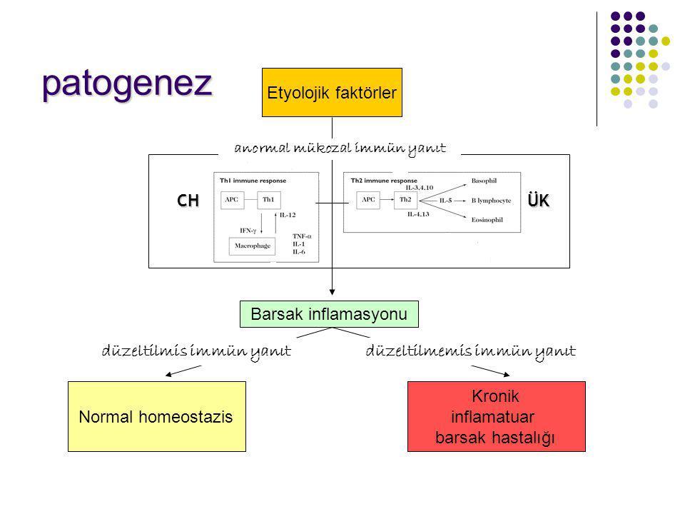 patogenez Etyolojik faktörler Barsak inflamasyonu Kronik inflamatuar barsak hastalığı Normal homeostazis CHÜK düzeltilmemis immün yanıt anormal mükoza