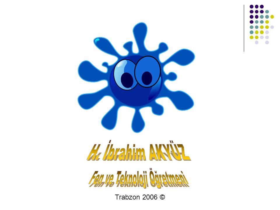 Trabzon 2006 ©