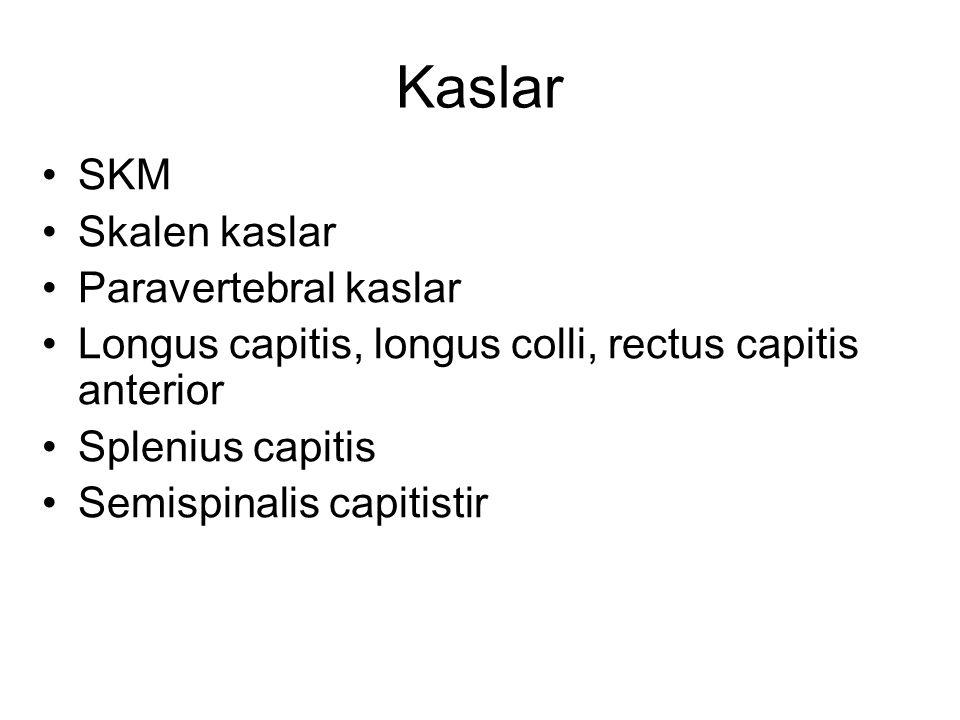 Kaslar SKM Skalen kaslar Paravertebral kaslar Longus capitis, longus colli, rectus capitis anterior Splenius capitis Semispinalis capitistir