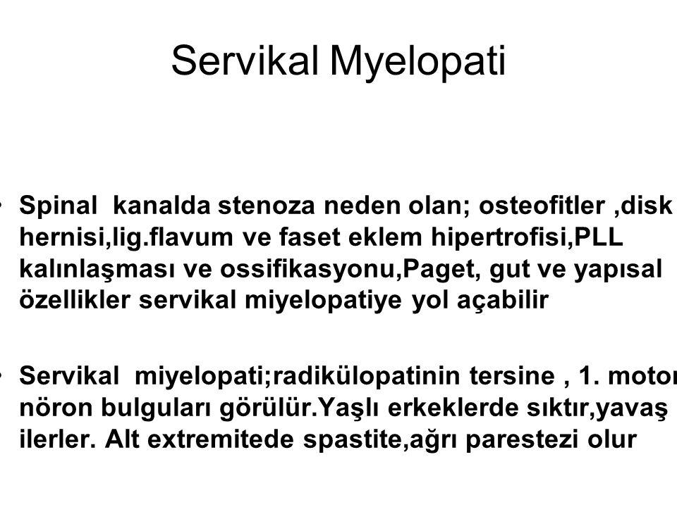 Servikal Myelopati Spinal kanalda stenoza neden olan; osteofitler,disk hernisi,lig.flavum ve faset eklem hipertrofisi,PLL kalınlaşması ve ossifikasyon